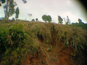 Tanah Longsor - Jalur Cianjur Selatan