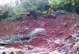 Bencana Alam Longsor:Detik Files